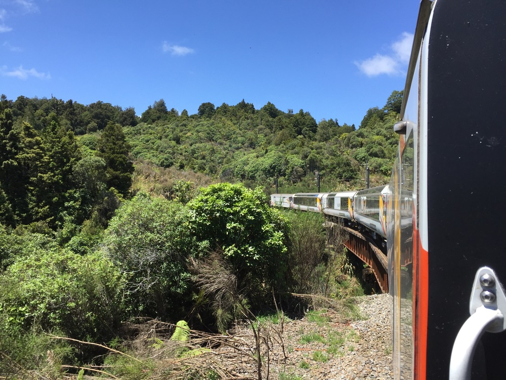 View from the Northern Explorer train, which takes 11 hours to go from Auckland to Wellington, passing through the countryside of New Zealand's North Island.