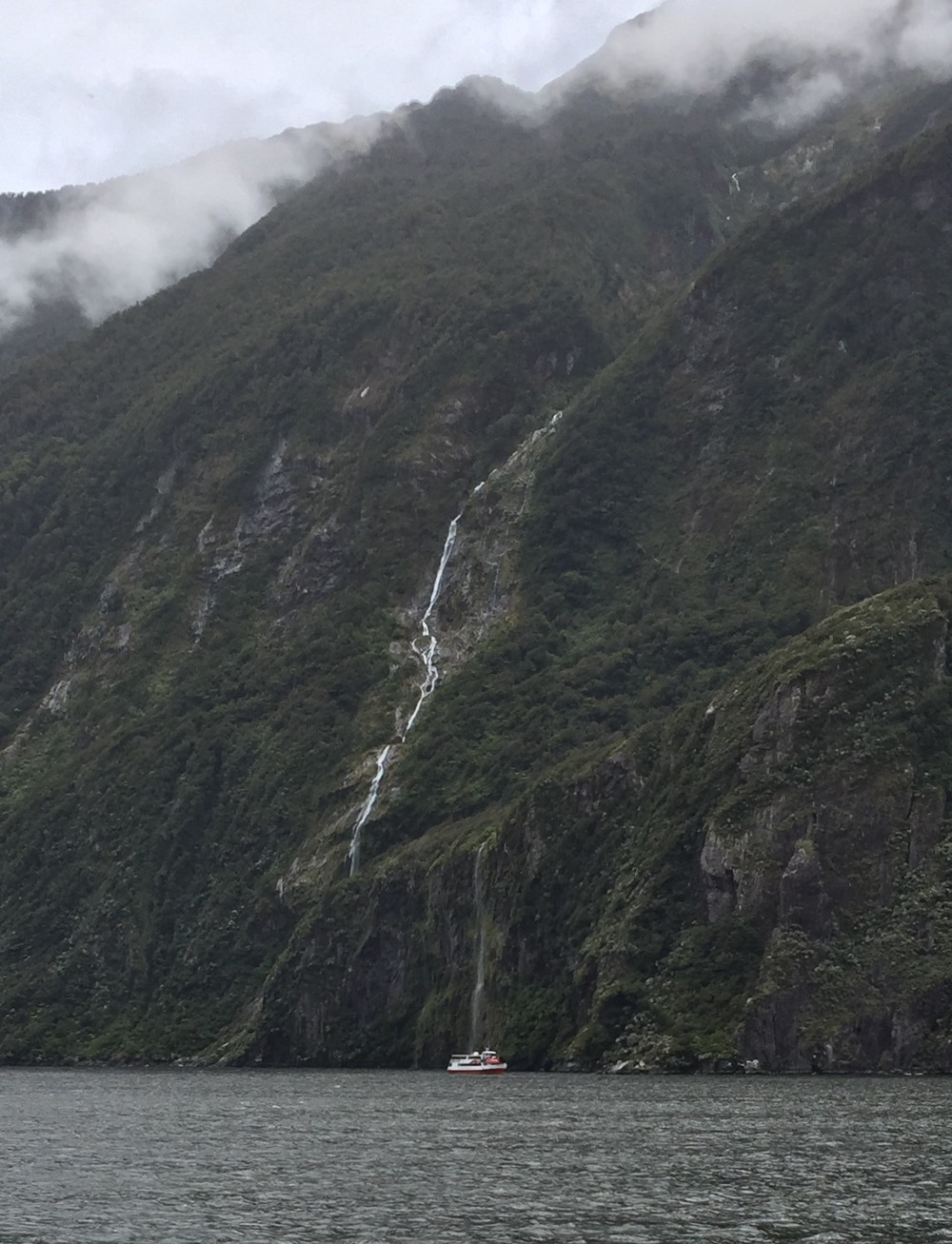 Cruising along the fiords of Milford Sound; for scale, note the 50 foot boat near the bottom center of the photo.