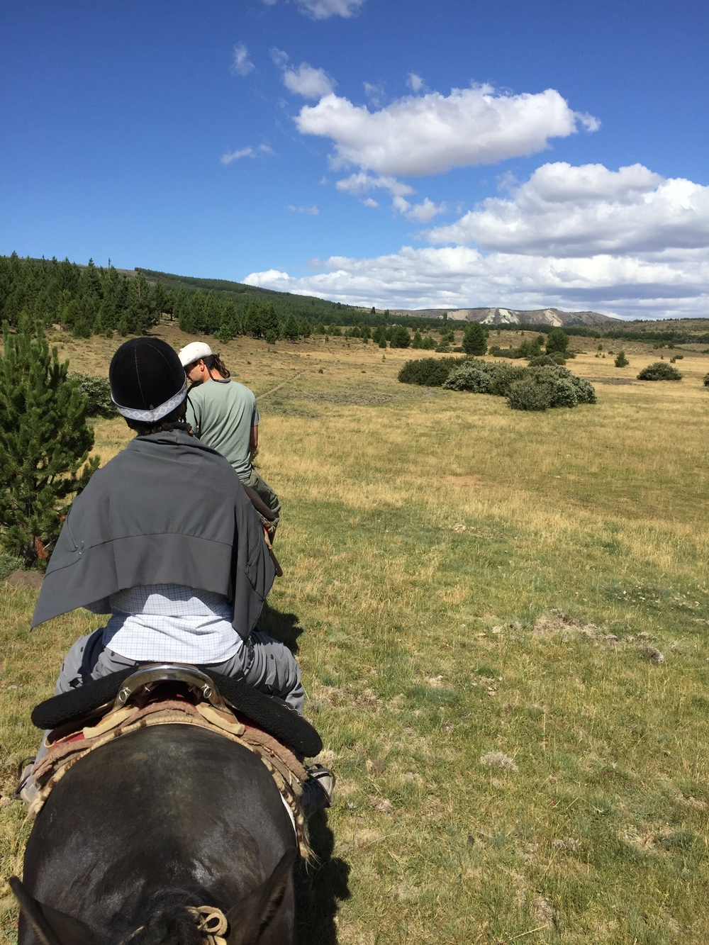 Horseback riding on the Patagonian steppe.