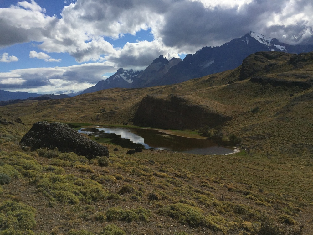 Near the end of the hike, we had a view of these rugged grasslands and an Alpine lake with peaks looming behind in Torees del Paine National Park.