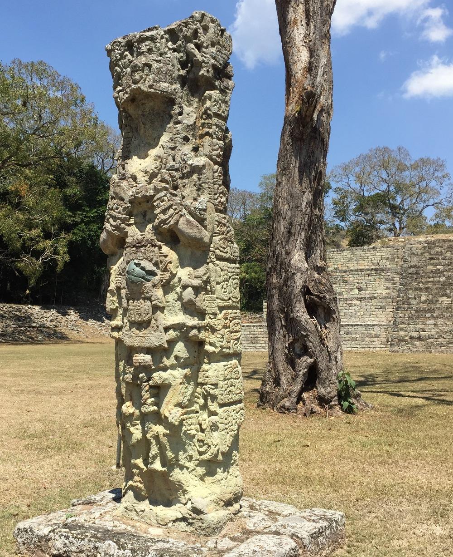 A stelae sculture at Copán, Honduras.