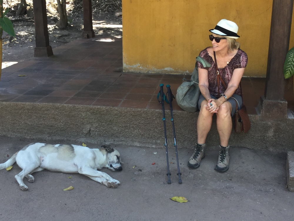 It got hot out here walking around Copán in the 90 degree heat...this pup's got the right idea.