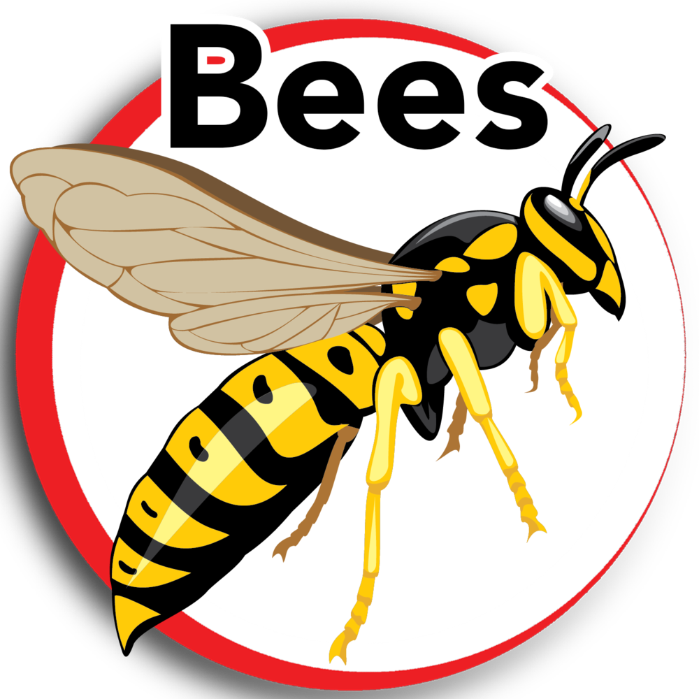 bees 1.png