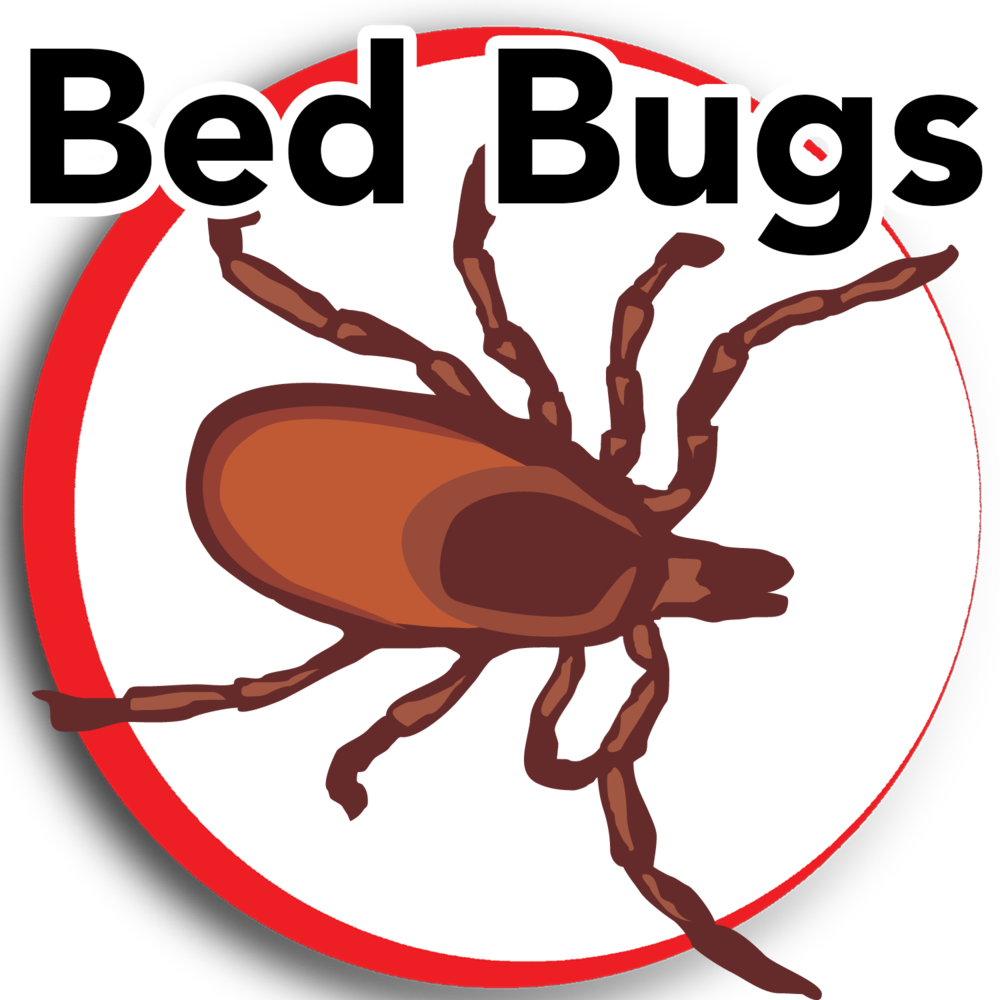 no+bedbugs+4.png