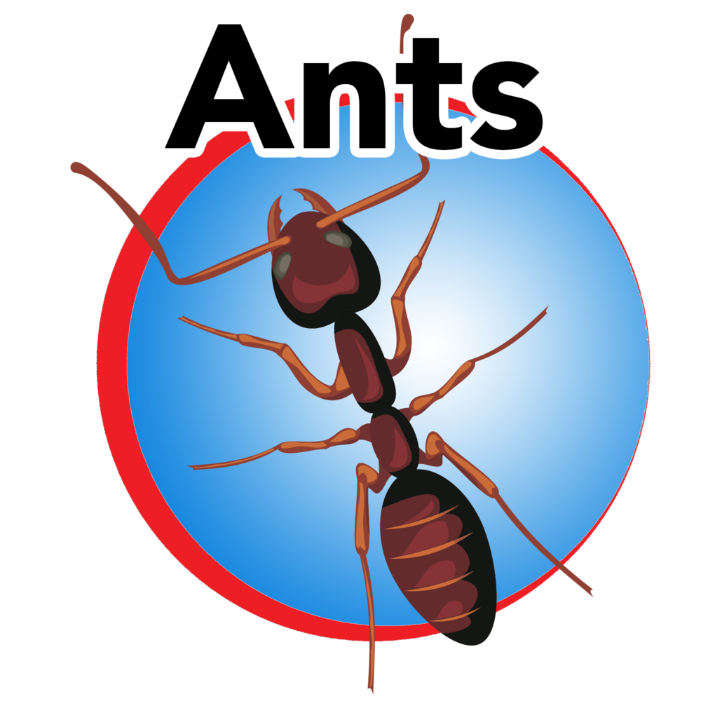 ants blue button.png