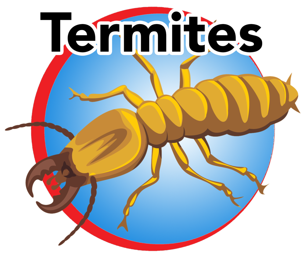 termites blue button.png