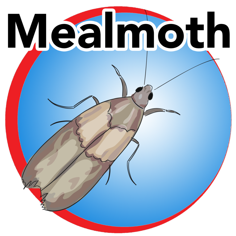 mealmoth blue buttom.png