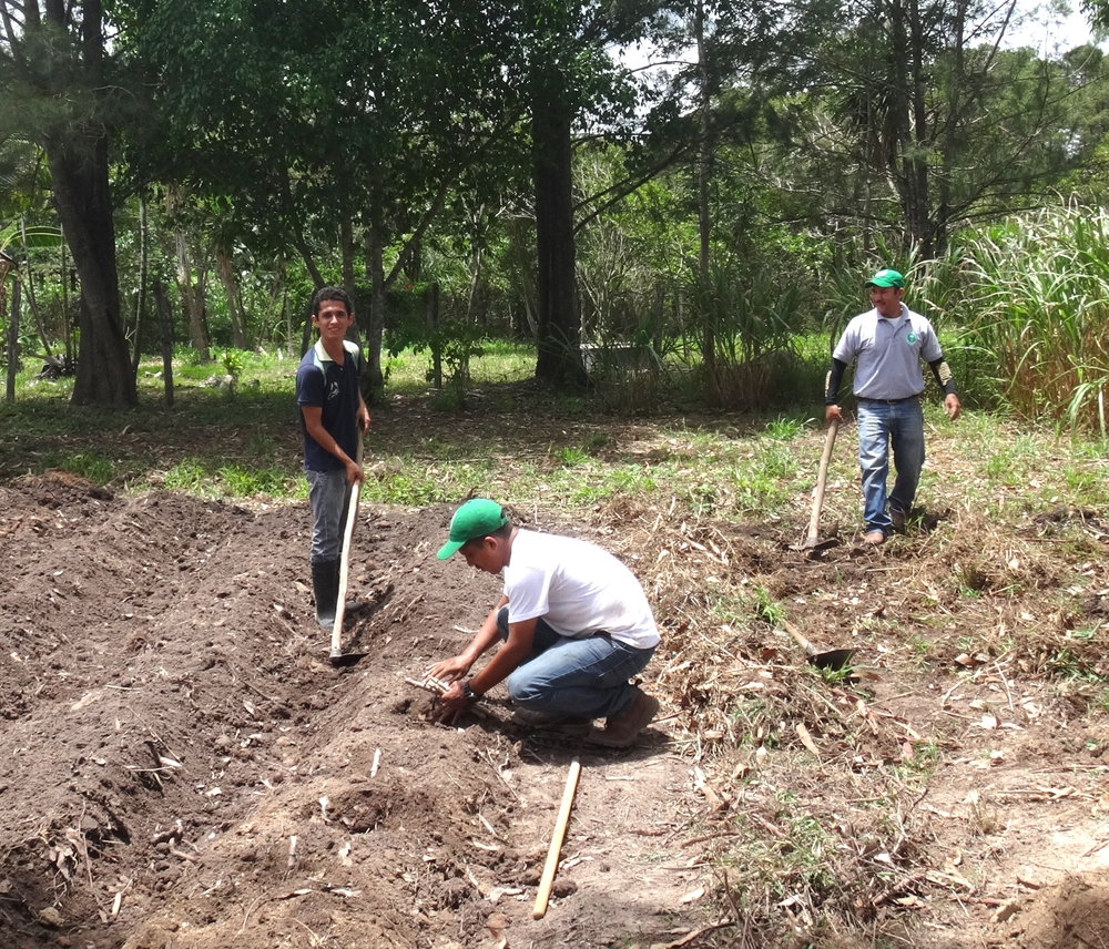 Heinert works with field trainers in Honduras to prepare a demonstration garden.