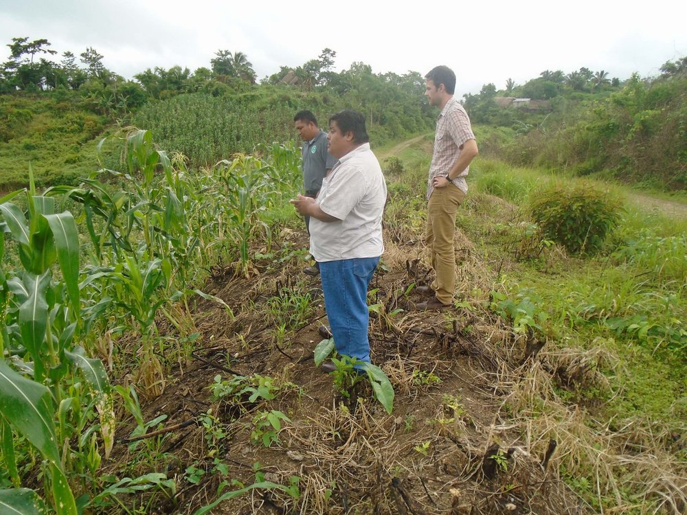 Leonardo surveys a cornfield with Field Program Director Elliott Powell and Field Technician Ernesto Pop. The new country director for our Belize program is pointing out damages caused by agrochemicals. – Photo by Candido Chun