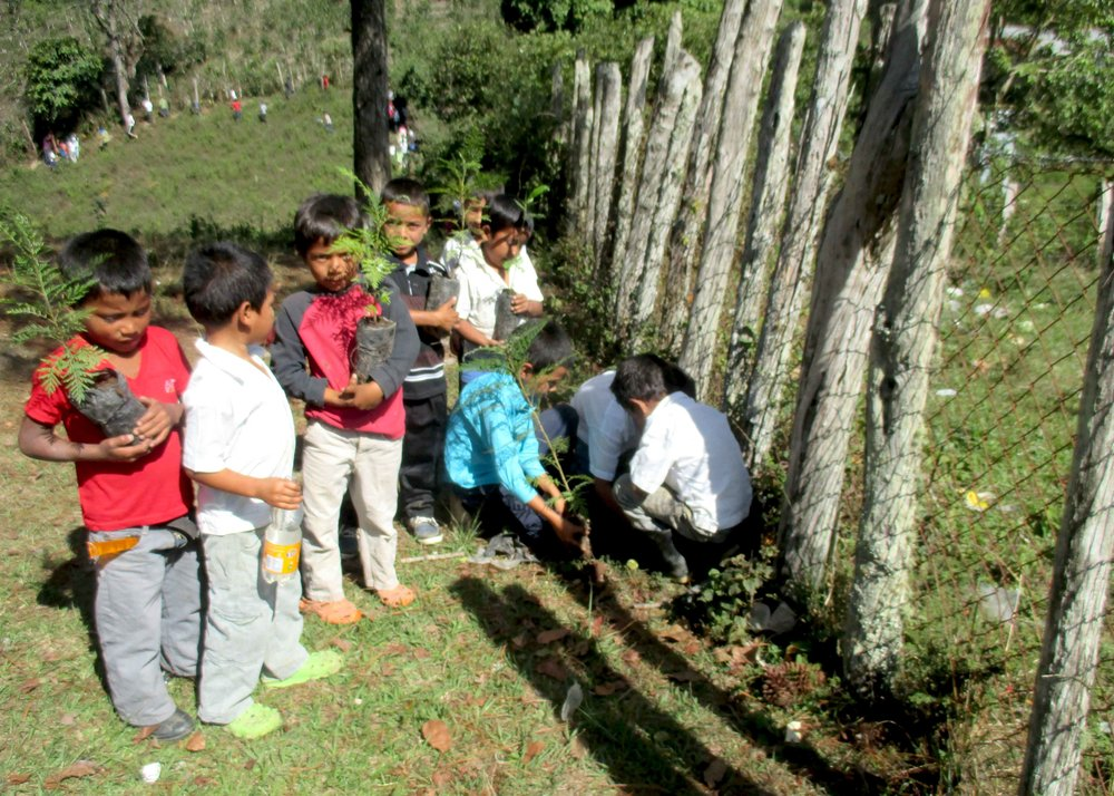 Students and teachers in El Pito, Honduras planted 200 trees! - photo by Jonatan Reyes
