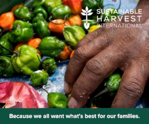 Sustainable Harvest International_Romeo's Hands
