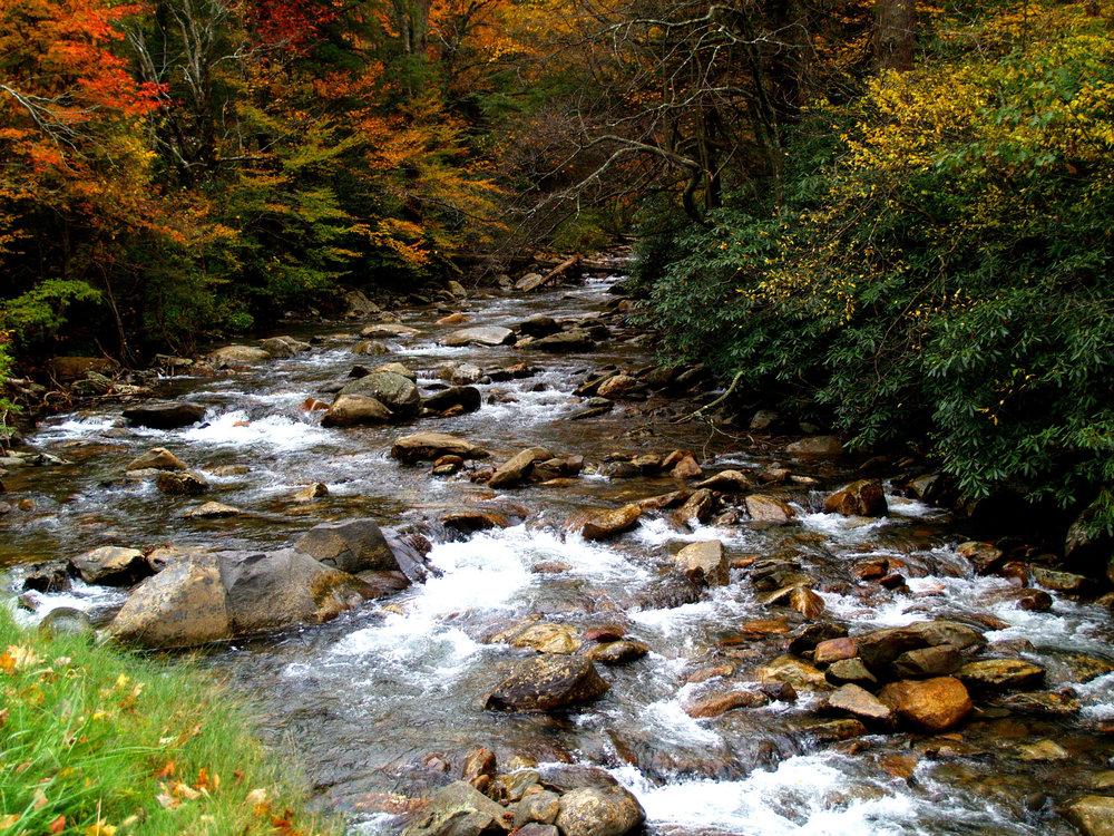 3.   Fighting Creek, Gatlinburg, TN