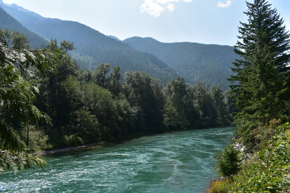 Driving up the Skagit River