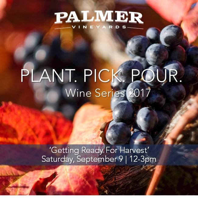Plant Pick Pour.jpg
