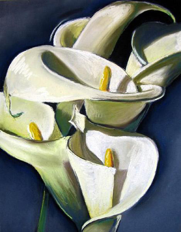 Callies, 2006