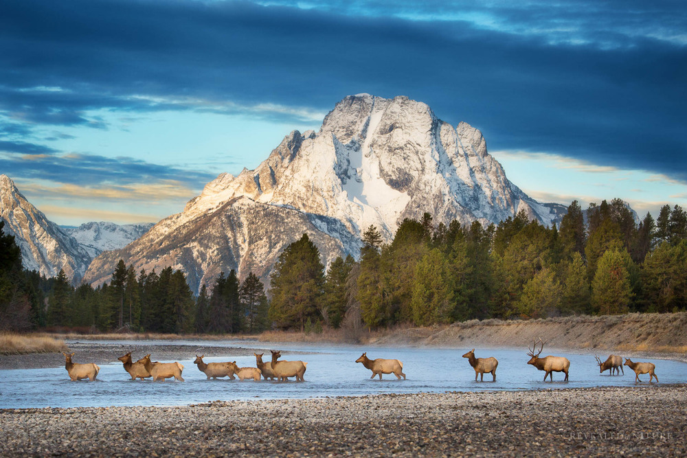 Grand Teton Photography
