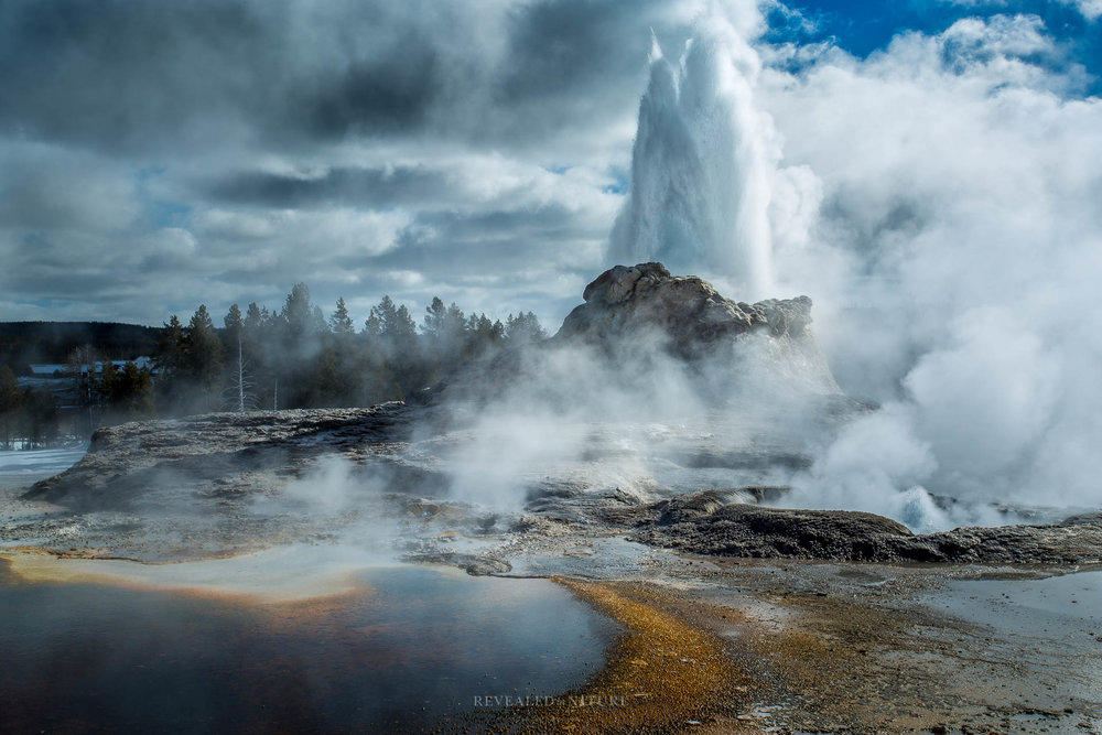 Yellowstone Geyser Pictures