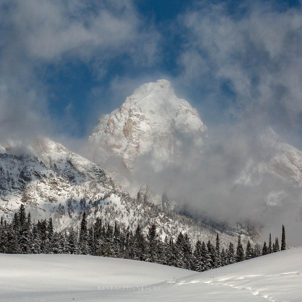 Yellowstone & Grand Teton Photo Tours