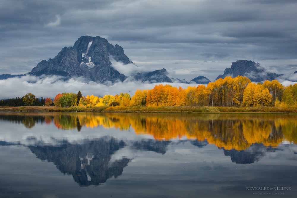 Oxbow Bend in Fall