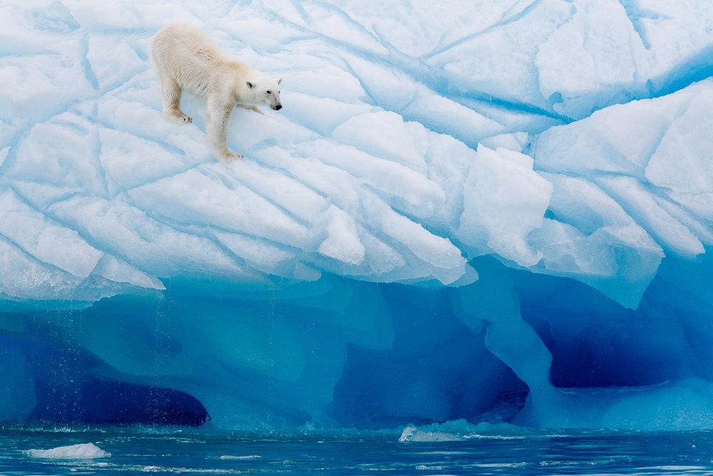 Svalbard-1.jpg