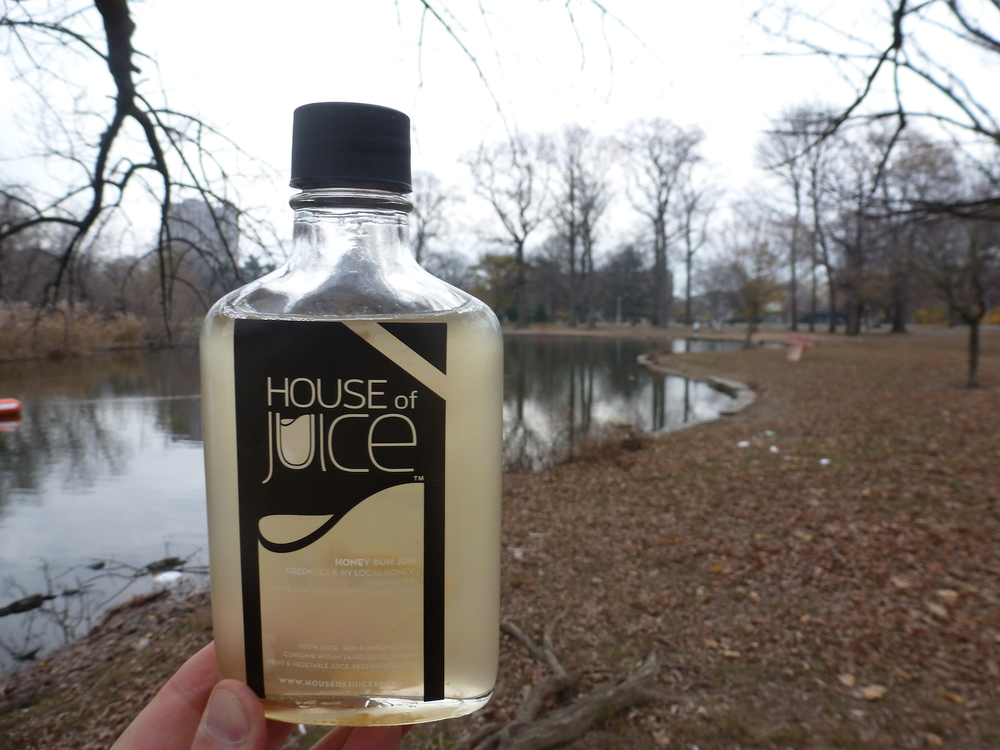 Grab a Honey Jun from House of Juice and enjoy it in Brooklyn's Prospect Park