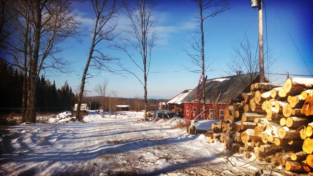 Square Deal Farm and the sugarhouse