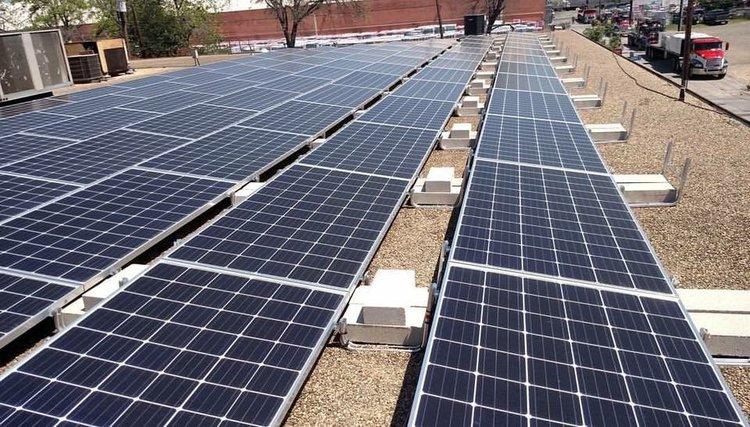 Texas Black Gold Garlic powers their operations in San Antonio 100% from solar energy.