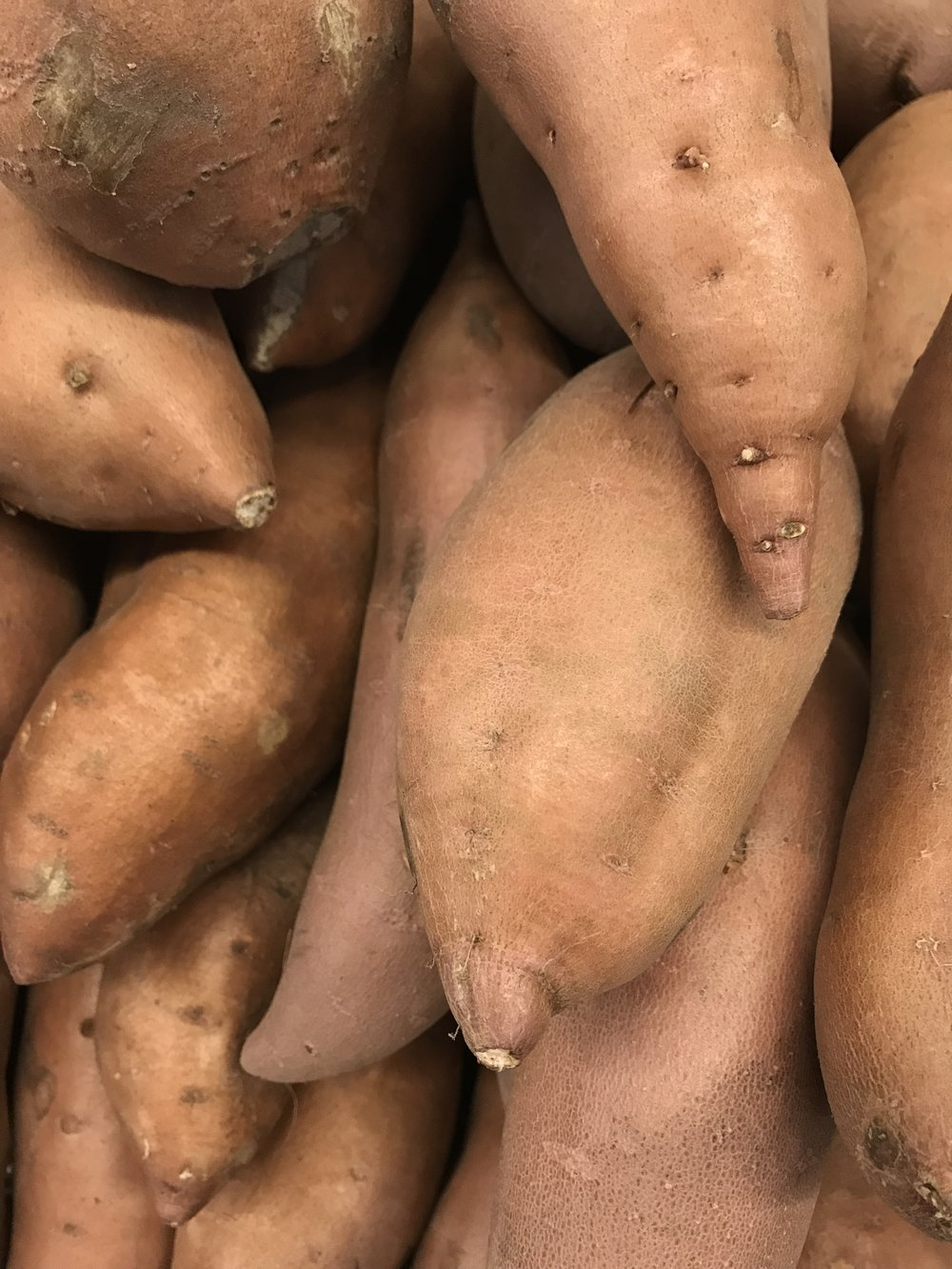 Orange sweet potato, often referred to as yams in supermarkets.