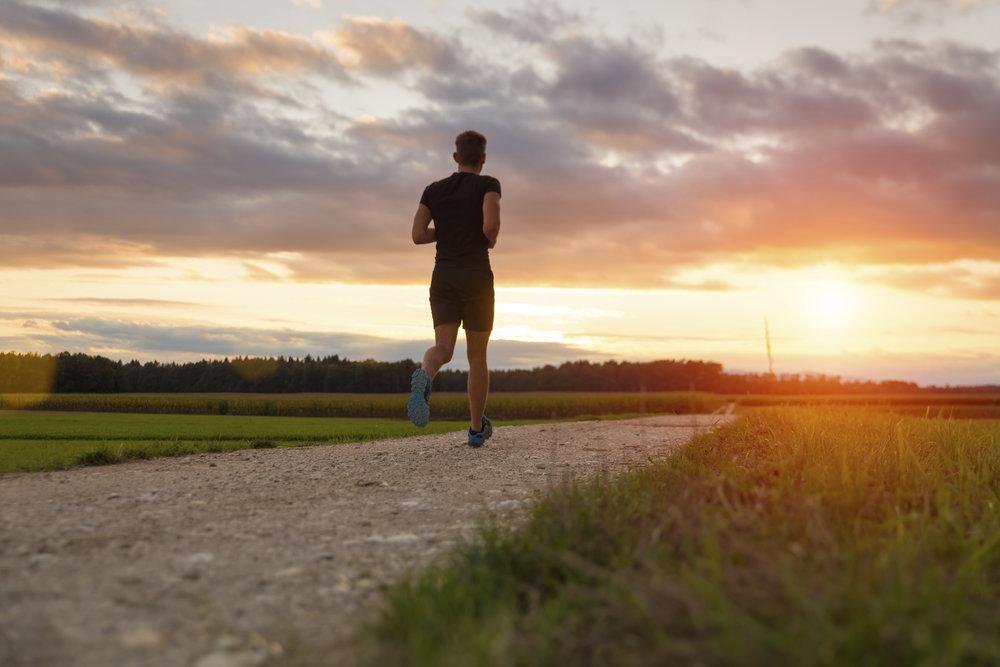 Rehbein personal coaching Marathon Vorbereitung