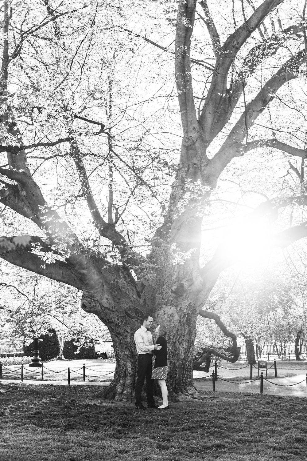 Classic + Modern Boston Public Garden, Beacon Hill, and Downtown Coffee Shop Sunrise Engagement Session | Jessica and Thomas | Lorna Stell | Photographer | Boston MA