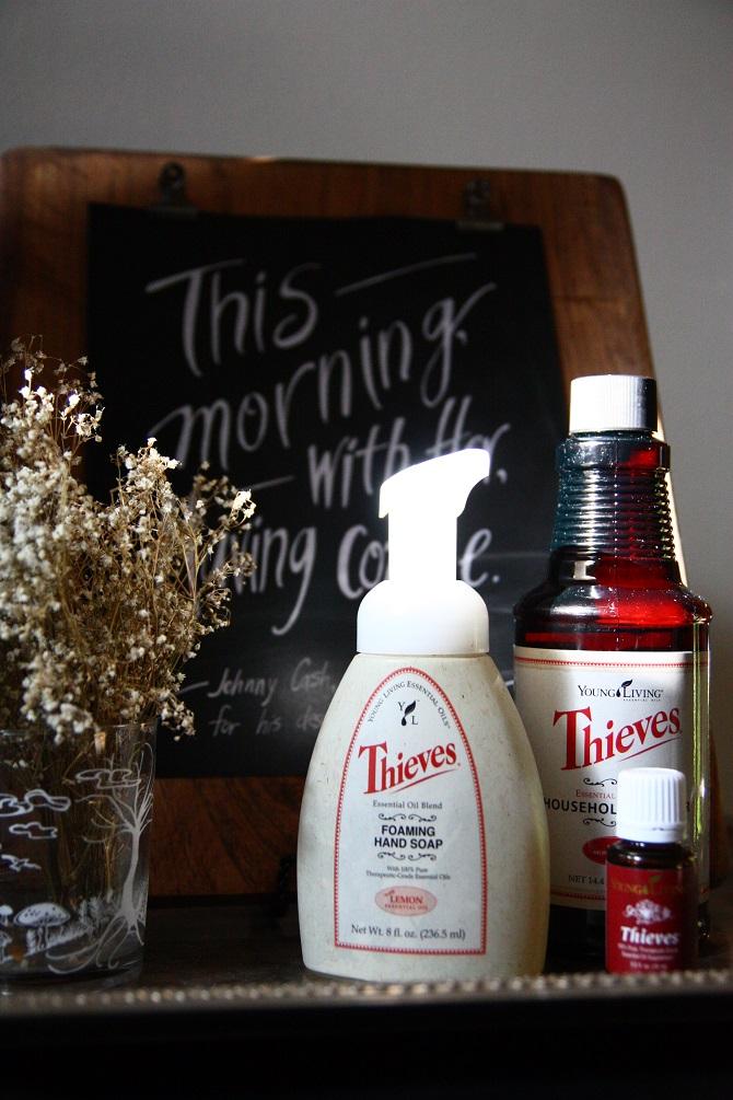 Diy Thieves Foaming Hand Soap Ashley Cribb