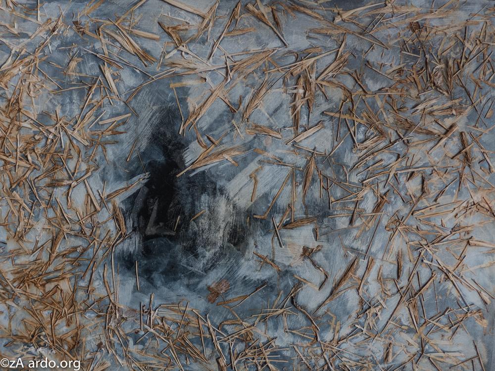 Nature's skin©zARDO-7.jpg