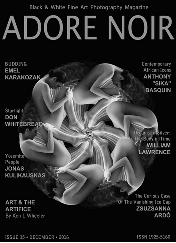 16 Adore Noir No35 cover featured artists.png