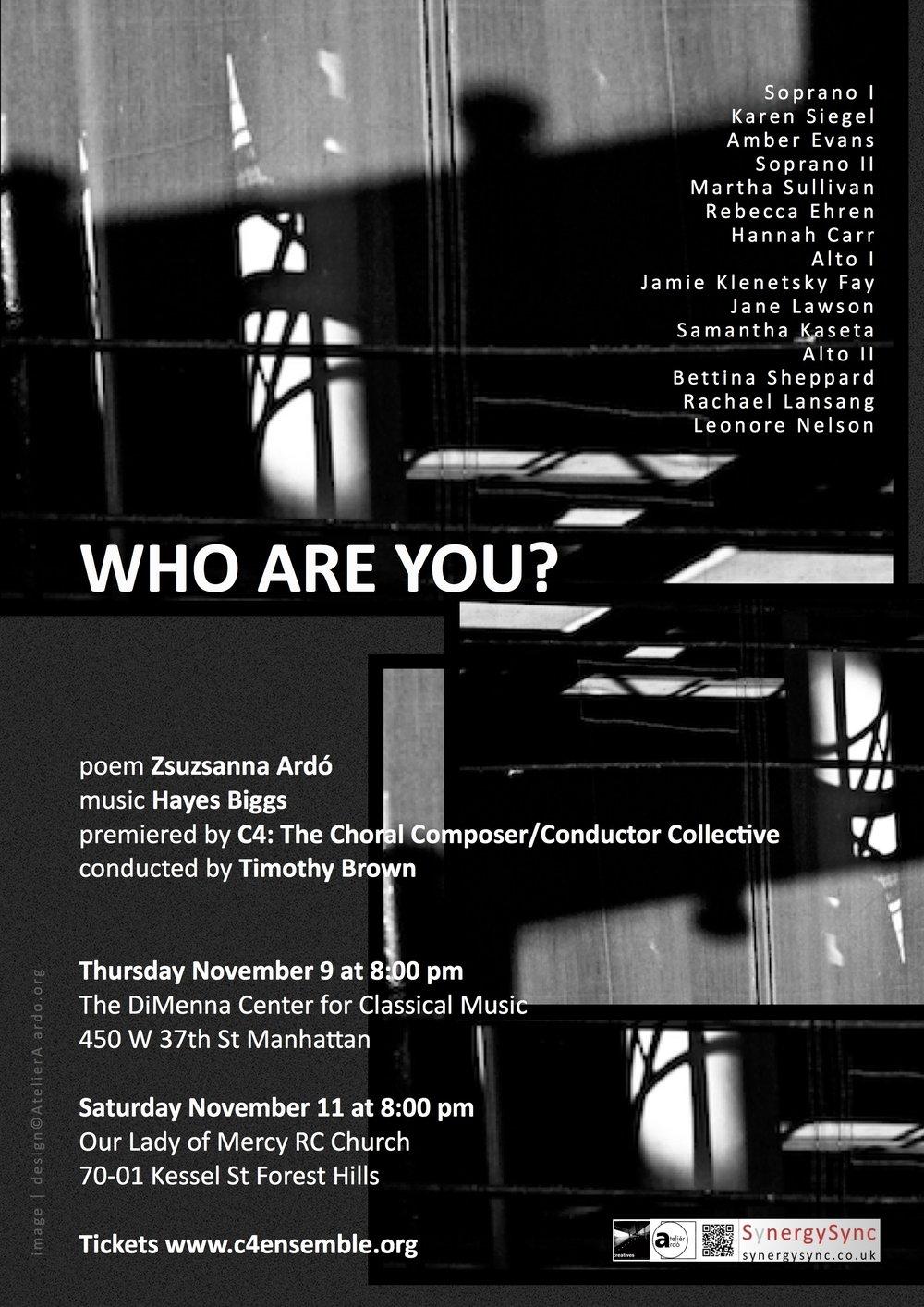 17 US NY C4 Who are you? poster wlist©zArdo.jpg