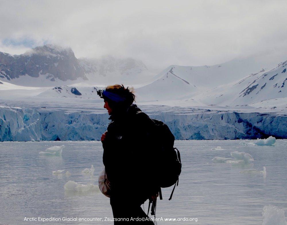 Zsuzsanna ARDÓ Arctic.jpeg