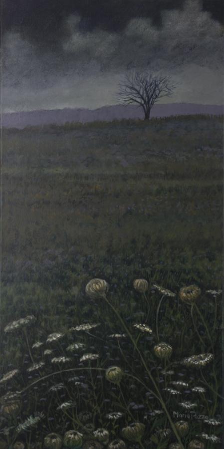 Wildflowers of CNY