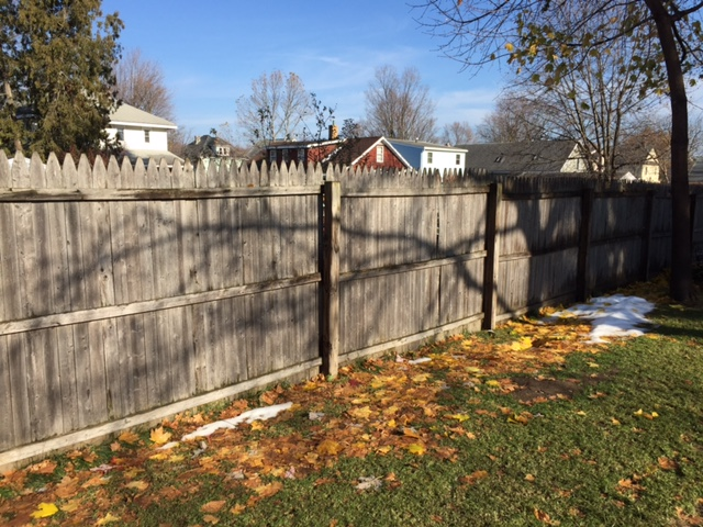 Shadows on Fence