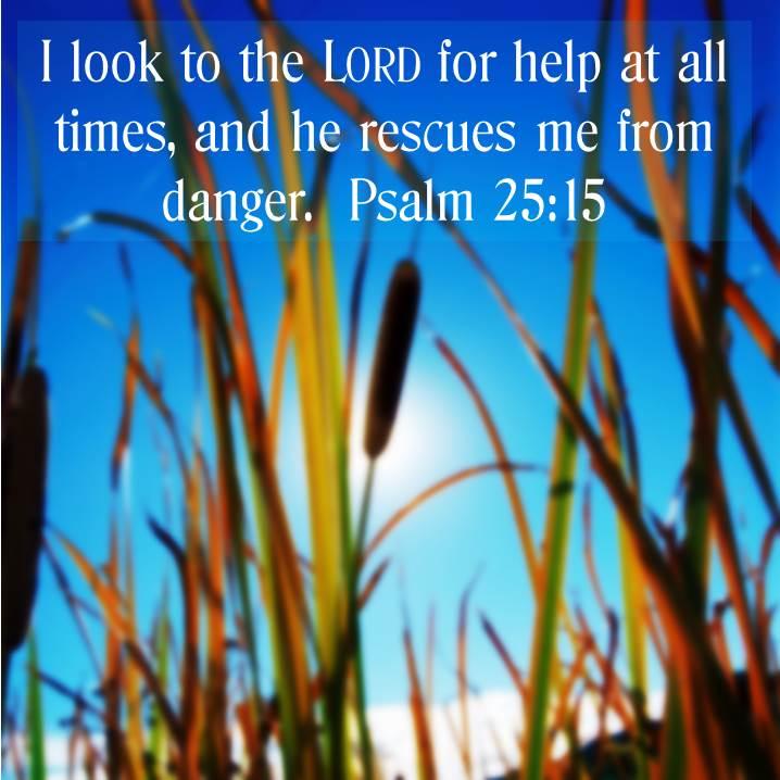 Psalm 25-15.jpg