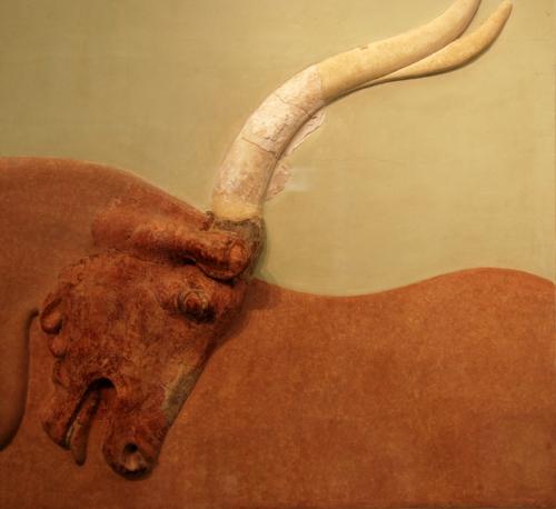 cretan bull.jpg