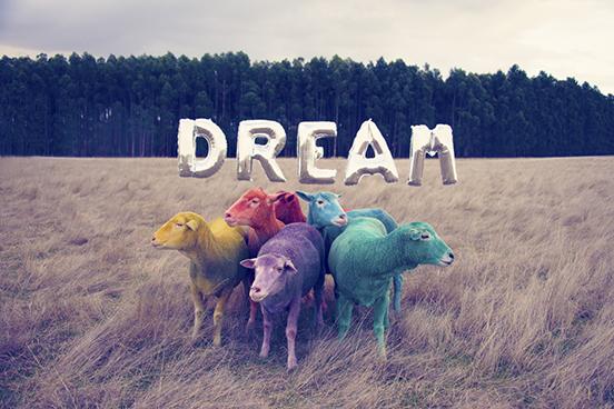 DREAM1.jpeg