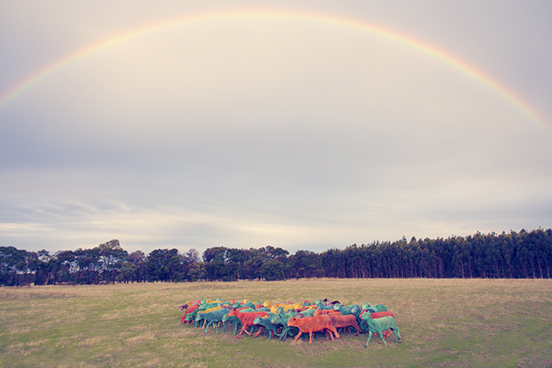 Double-Rainbow_1.jpg