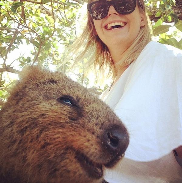 Quokka_Selfies_Meet_the_Worlds_happiest_Animal_on_Instagram_2015_04.jpg