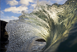Green Claw - Ray Collins
