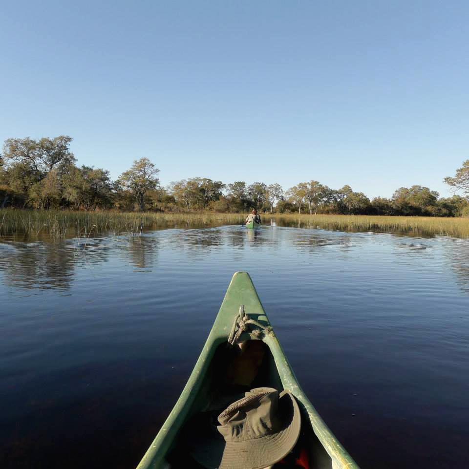 Canoeing Selinda River