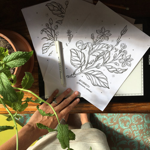 Botanical Coloring Pages — Jill De Haan