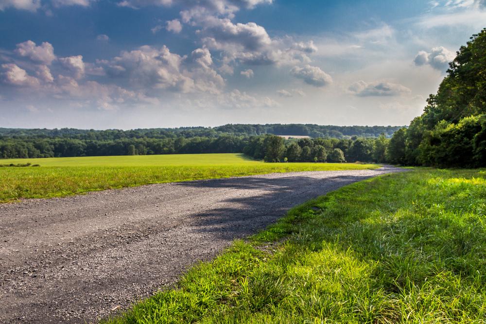 The Road-1.jpg