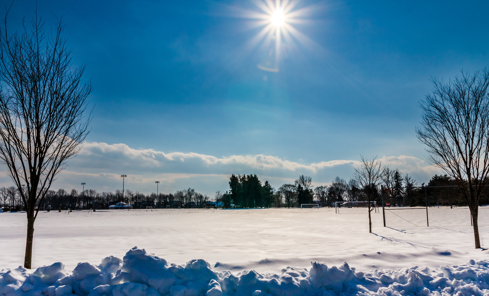 Winter Sun-1.jpg