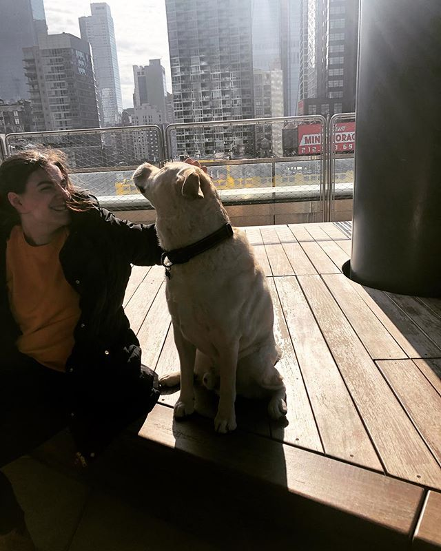 Hard to have the March Blues when the sun is out! #herecomesthesun #woofwoofwoofwoof #TMABnyc #555TEN . . . #555pets #extell #NYC #HellsKitchen #Hudsonyards #petcare