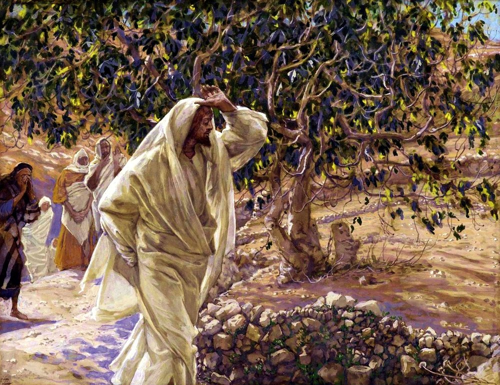 Jesus cursing the fig tree.