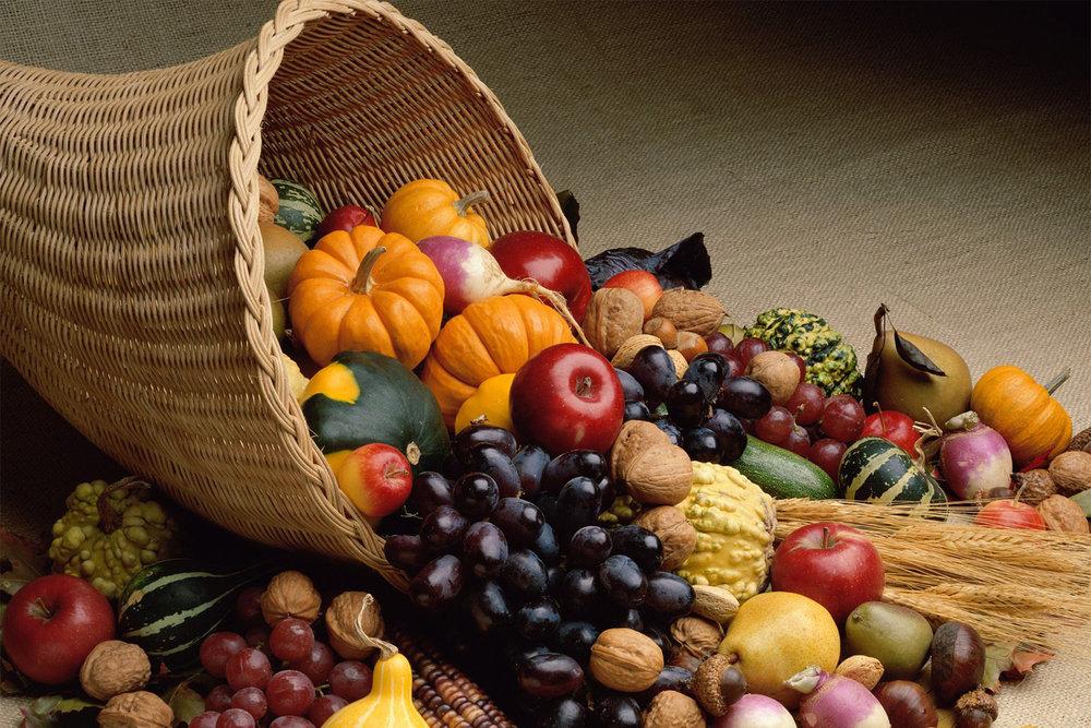 harvest-06.jpg